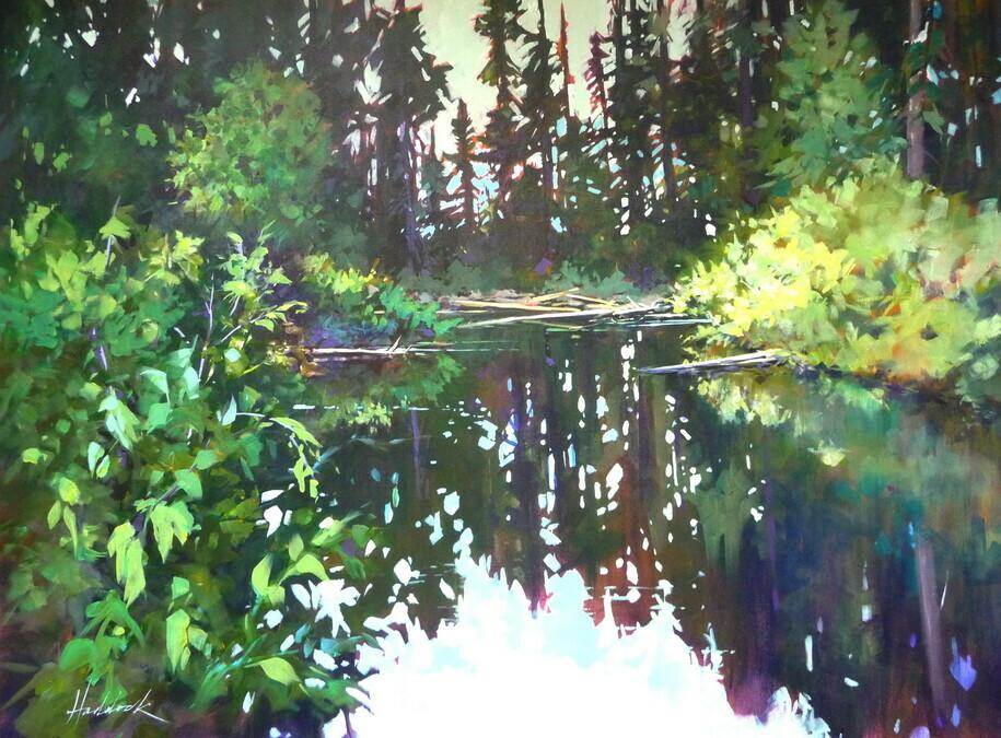 Mission creek park